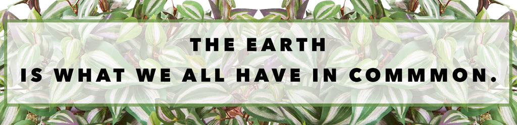 Inspirational Quotes For Earth Day: The Earth Is What We All Have In Common