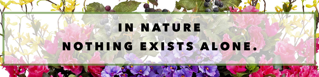 Inspirational Quotes For Earth Day: In Nature Nothing Exists Alone