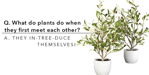 Plant Jokes For April Fool's Day