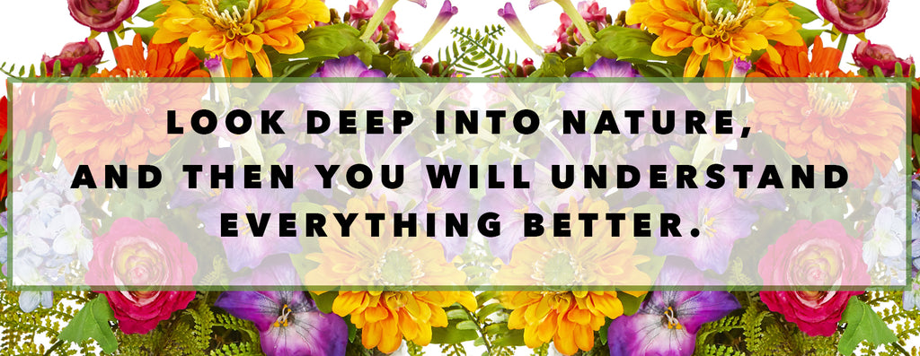Inspirational Quotes For Earth Day: Look Deep Into Nature And Then You Will Understand Everything Better.