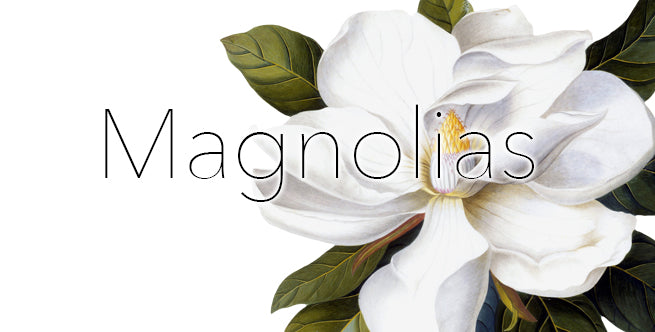 Artificial Winter Florals To Outlive The Holidays: Magnolias