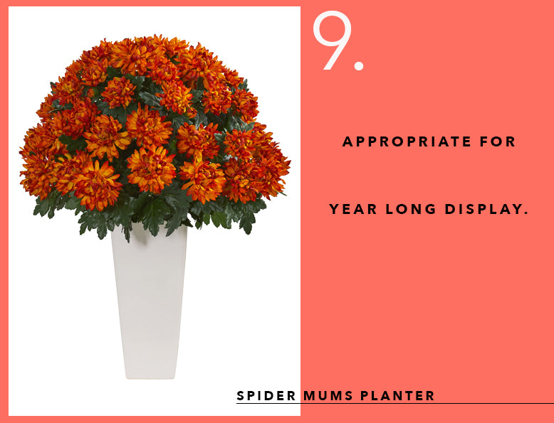 Pantone's Color of the Year With Mum Arrangements