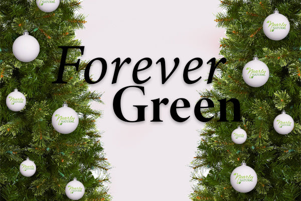 Benefits Of An Artificial Christmas Tree: Forever Green
