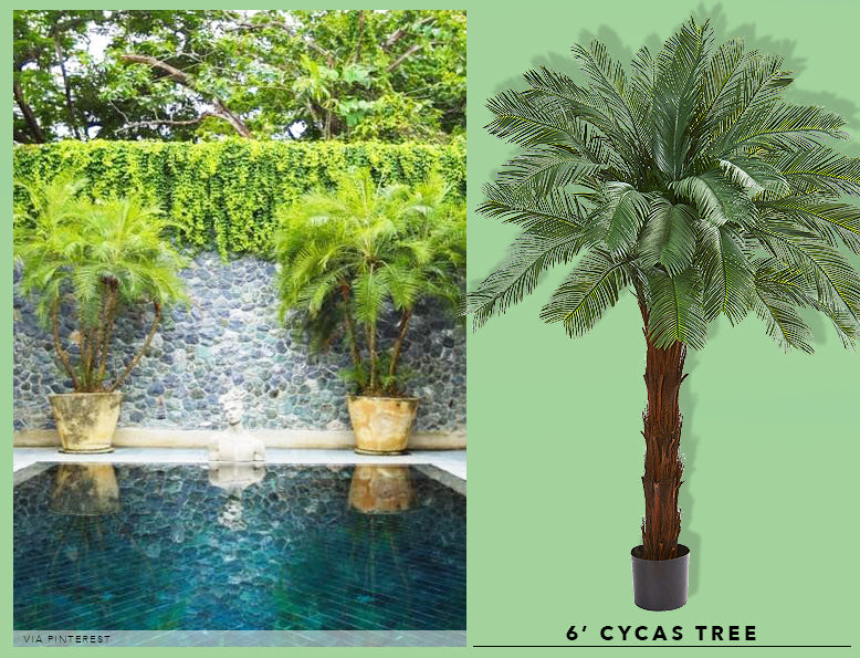 Spring Cleaning + Sprucing With UV Resistant Cycas Treess
