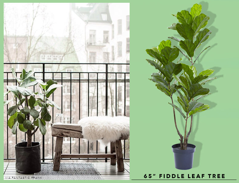 Spring Cleaning + Sprucing With UV Resistant Fiddle Leaf Trees