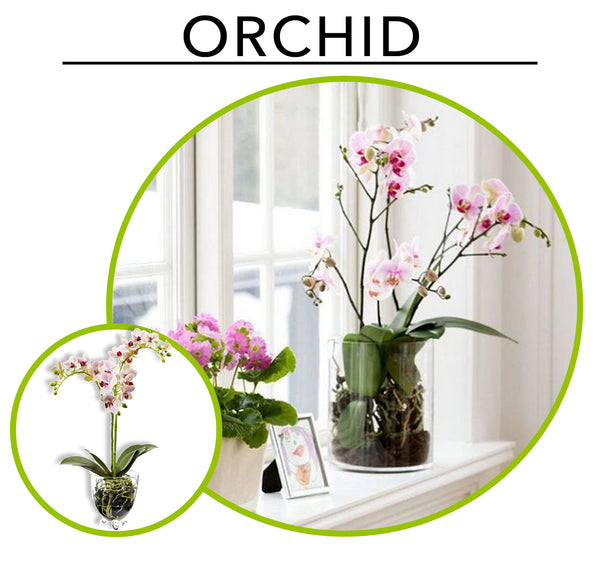 Tropic Like its Hot; Artificial Plants To Create Your Own Urban Jungle Indoors: Orchids