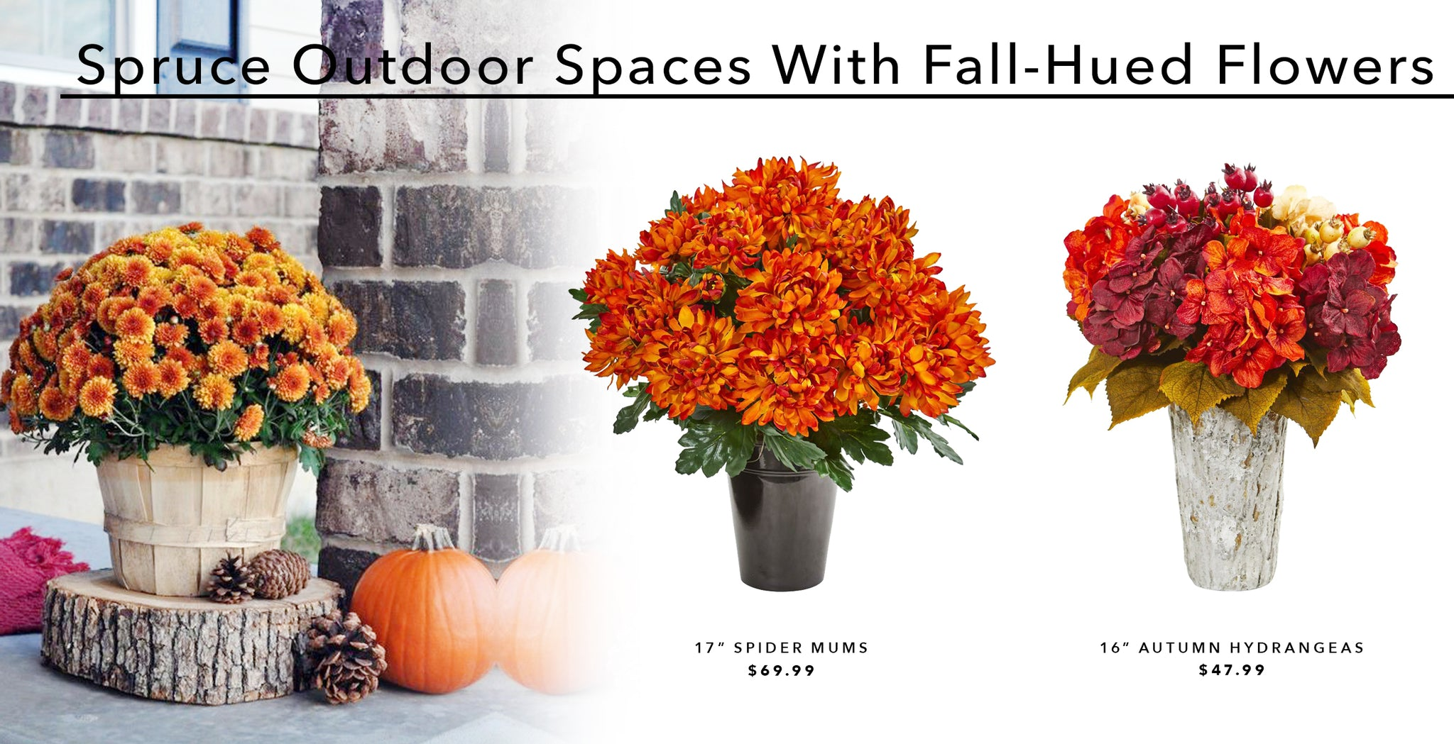 Spruce Up Outdoor Spaces With Fall-Hued Flowers
