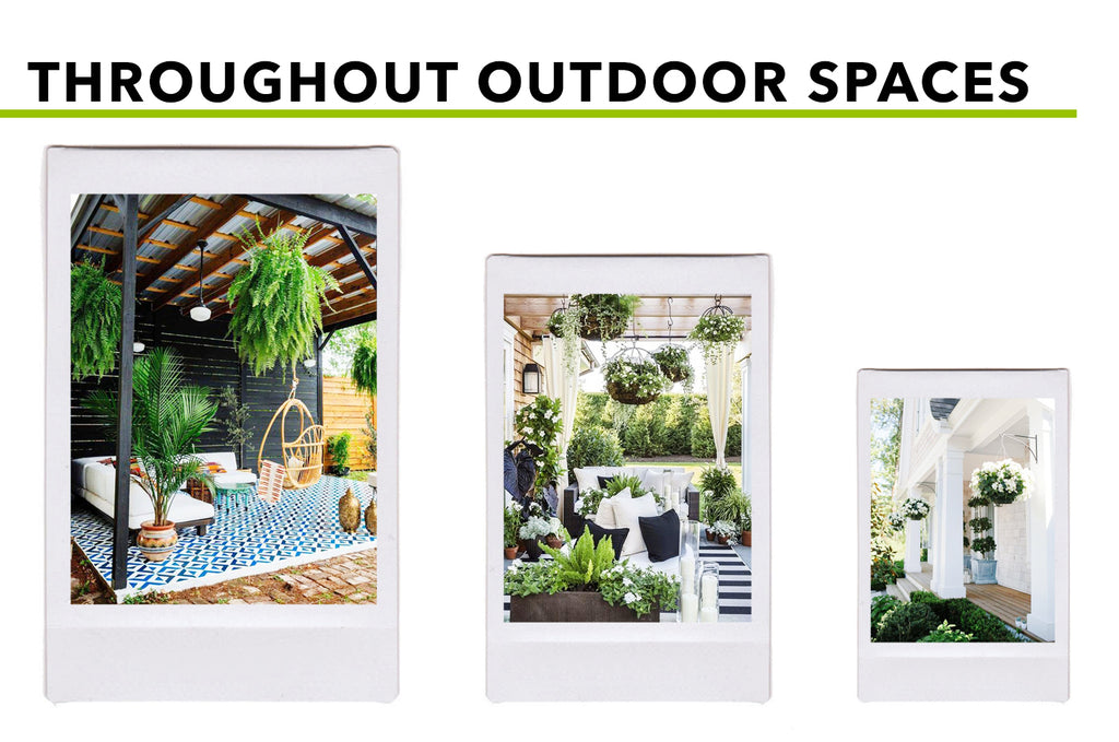 Picturesque Places For Hanging (Silk) Plants: Throughout Outdoor Spaces