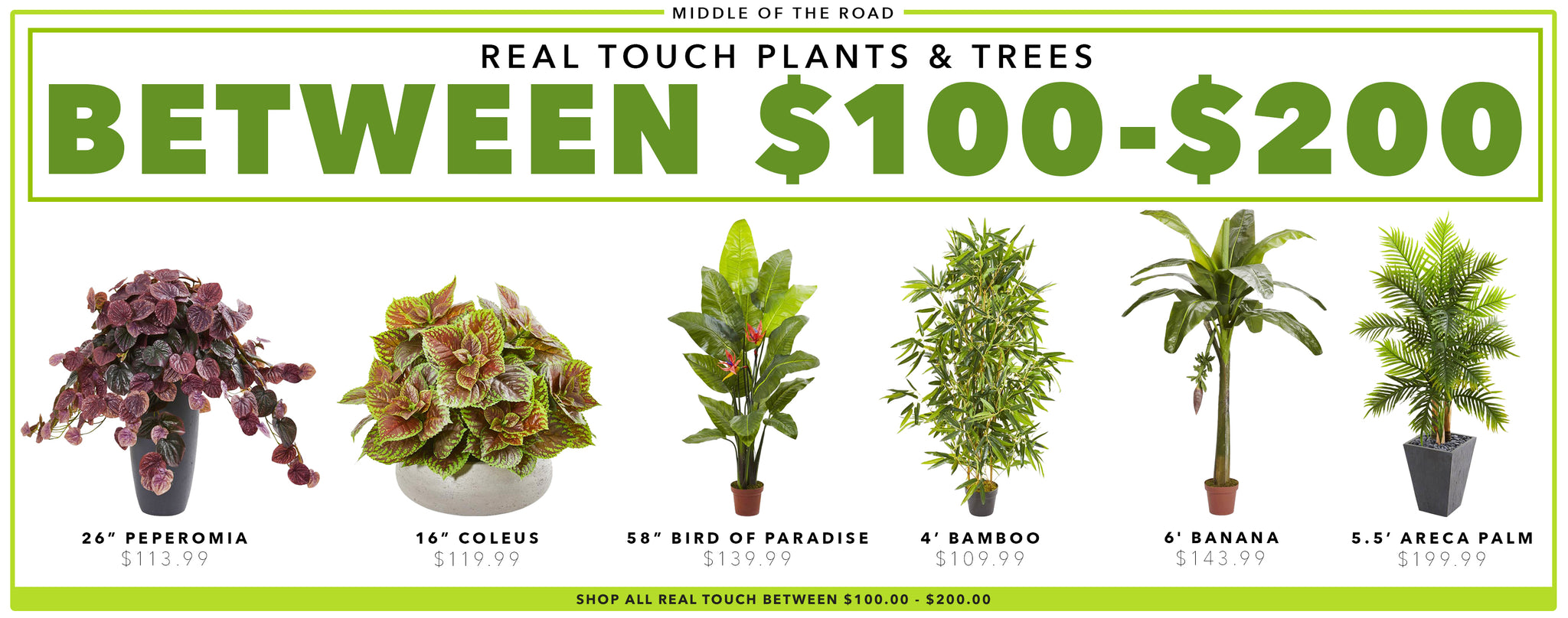 Real Touch Plants & Trees Between $100 - $200