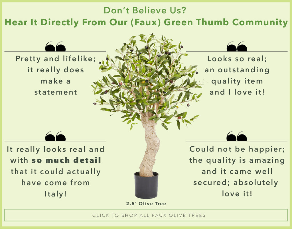 Reviews of Faux Olive Trees