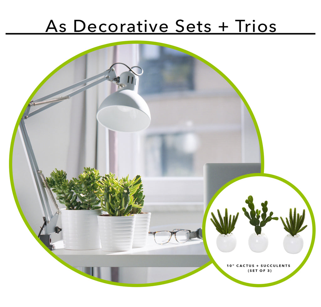 Using Artificial Succulents As A Decorative Set