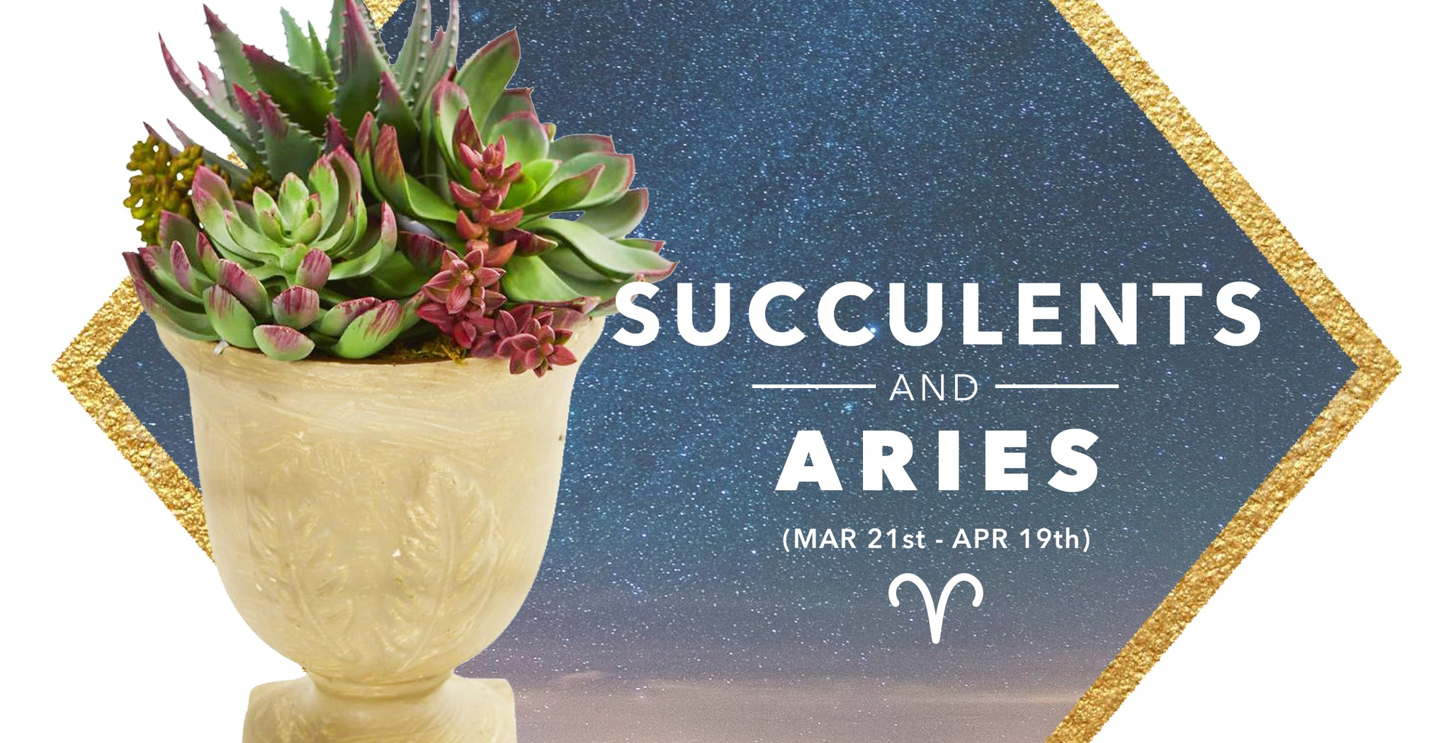 ARTIFICIAL SUCCULENTS & ARIES