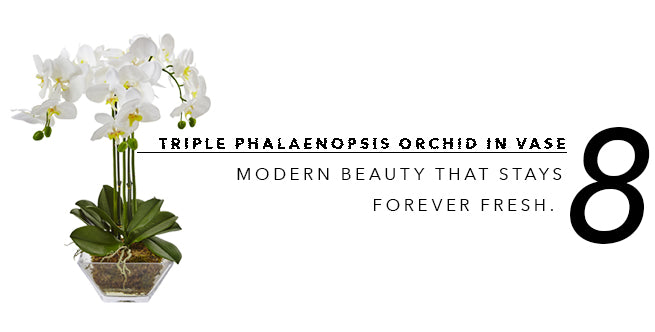 2018's Best In Show of Fake Artificial Plants: Phalaenopsis Orchid
