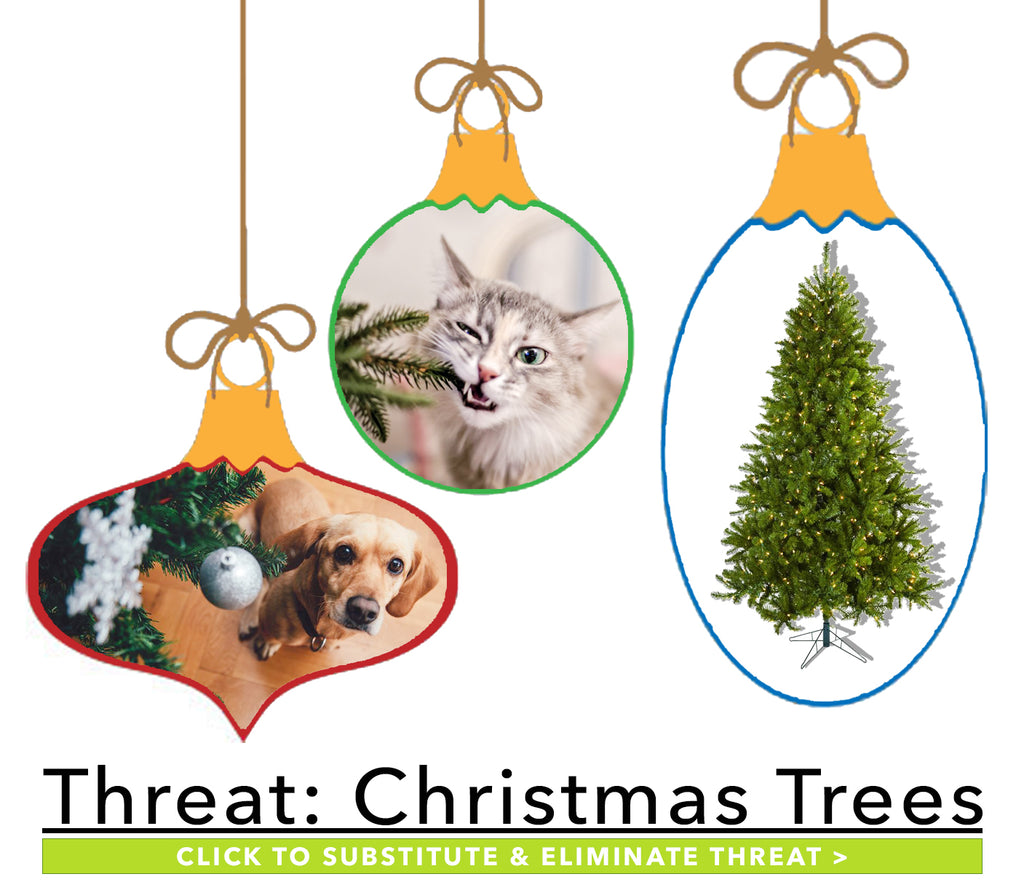 Winter Plants Harmful to Pets: Christmas Trees