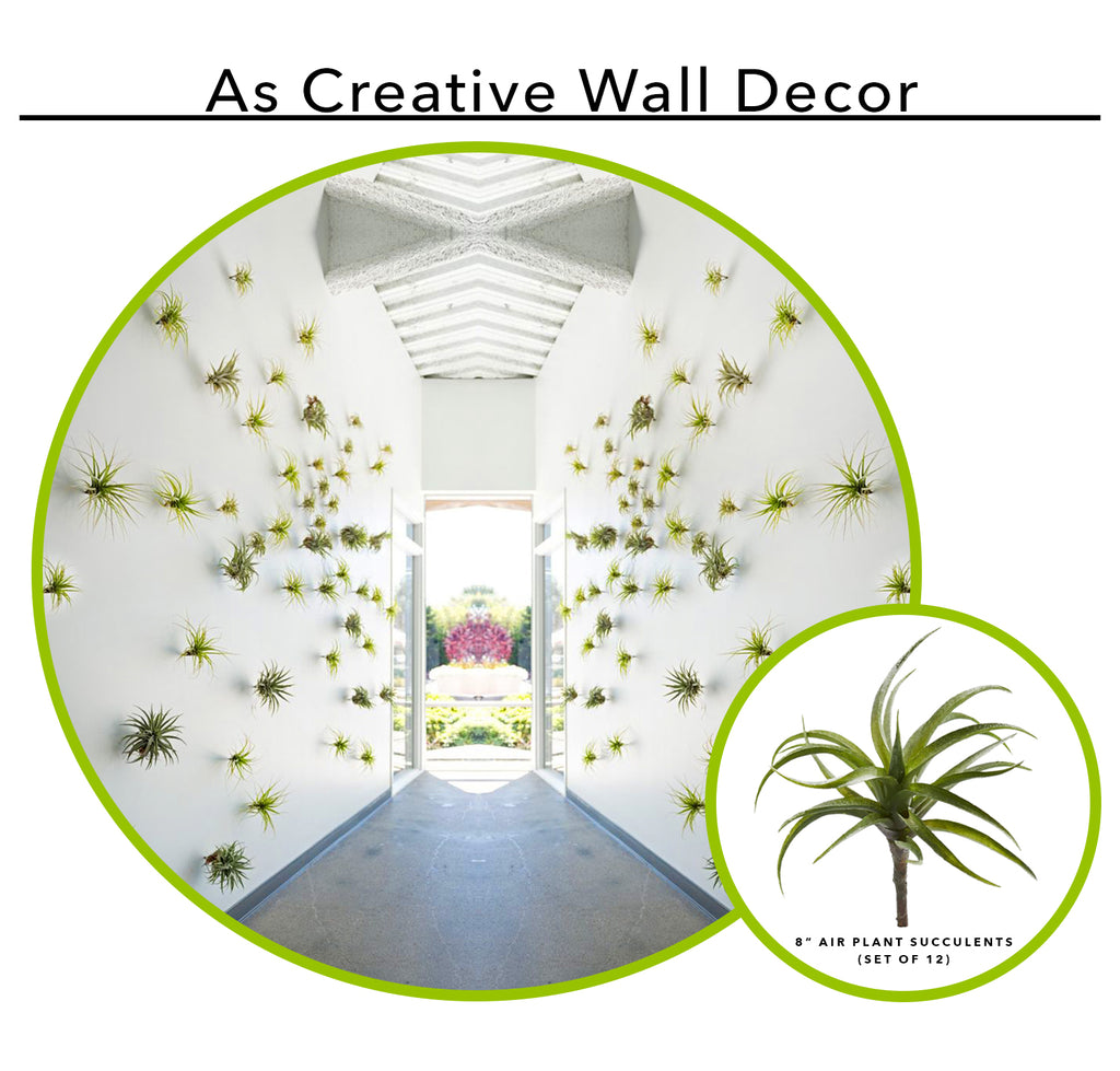 Using Artificial Succulents As Creative Wall Decor