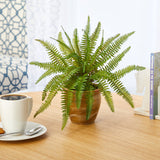 "10"" Fern Artificial Plant in Ceramic Planter"