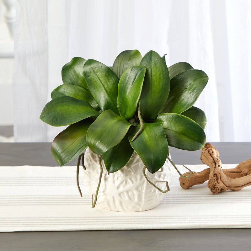 "10"" Phalaenopsis Orchid Leaf Artificial Plant in White Planter"