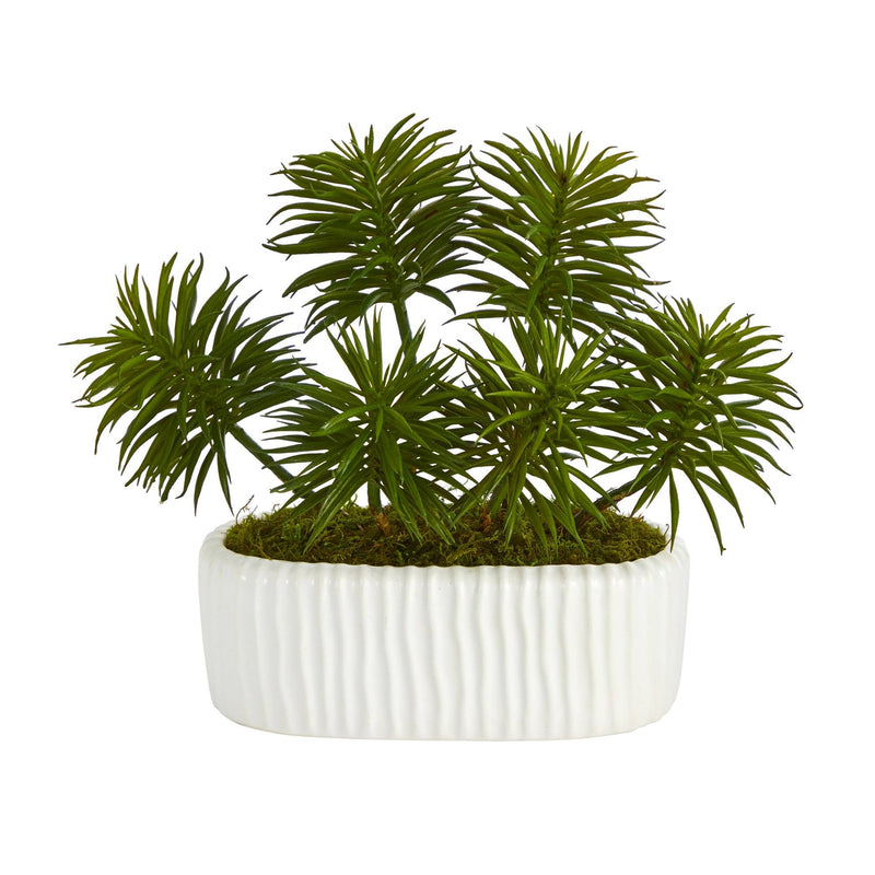 "10"" Succulent Artificial Plant in White Planter"