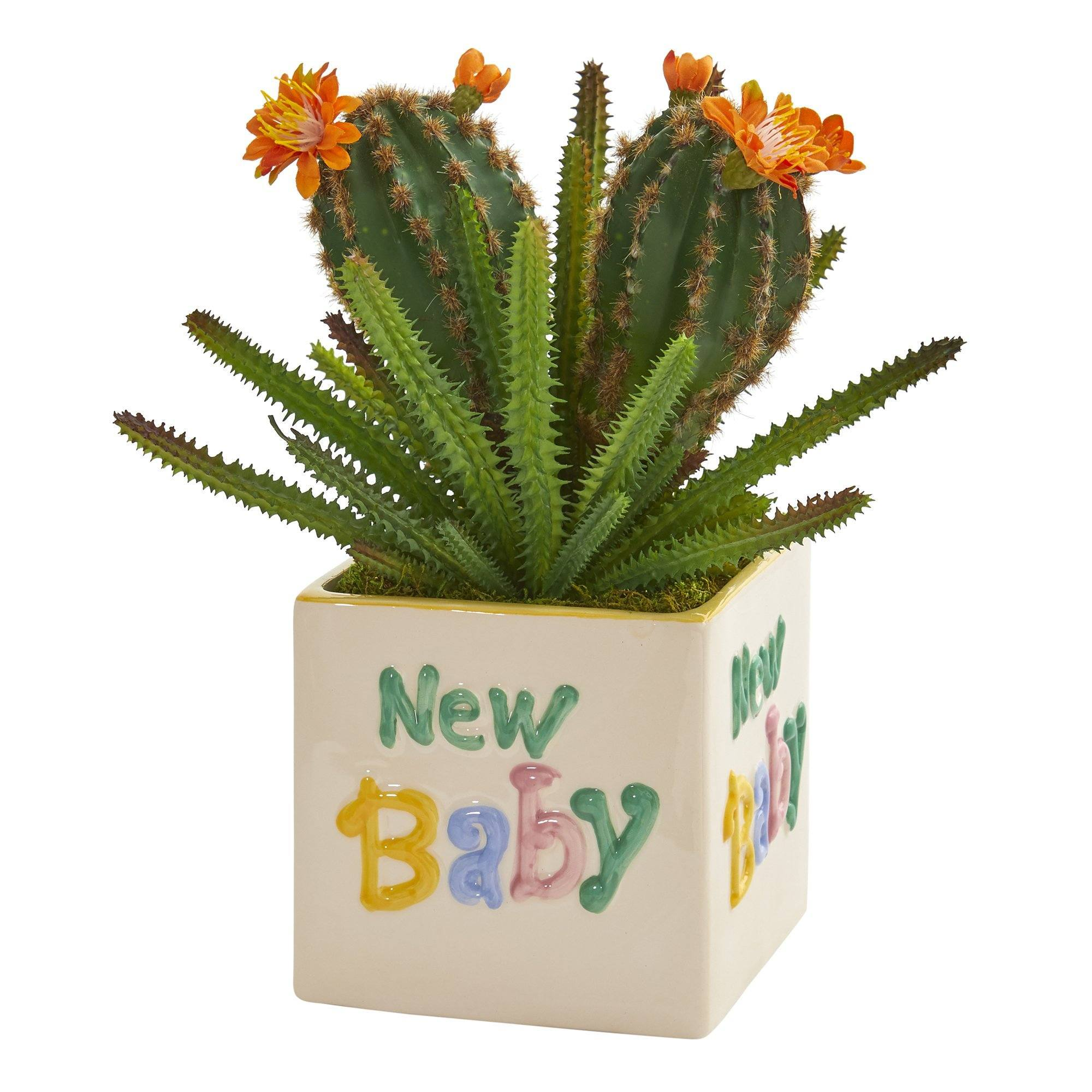 11 Cactus Succulent Artificial Plant In New Baby Planter Nearly Natural
