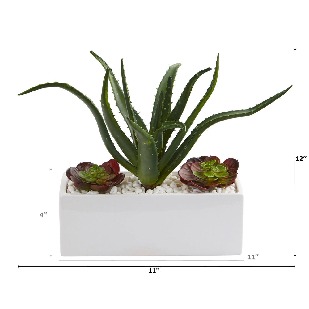 "12"" Aloe and Echeveria Succulent Artificial Plant in White Planter"