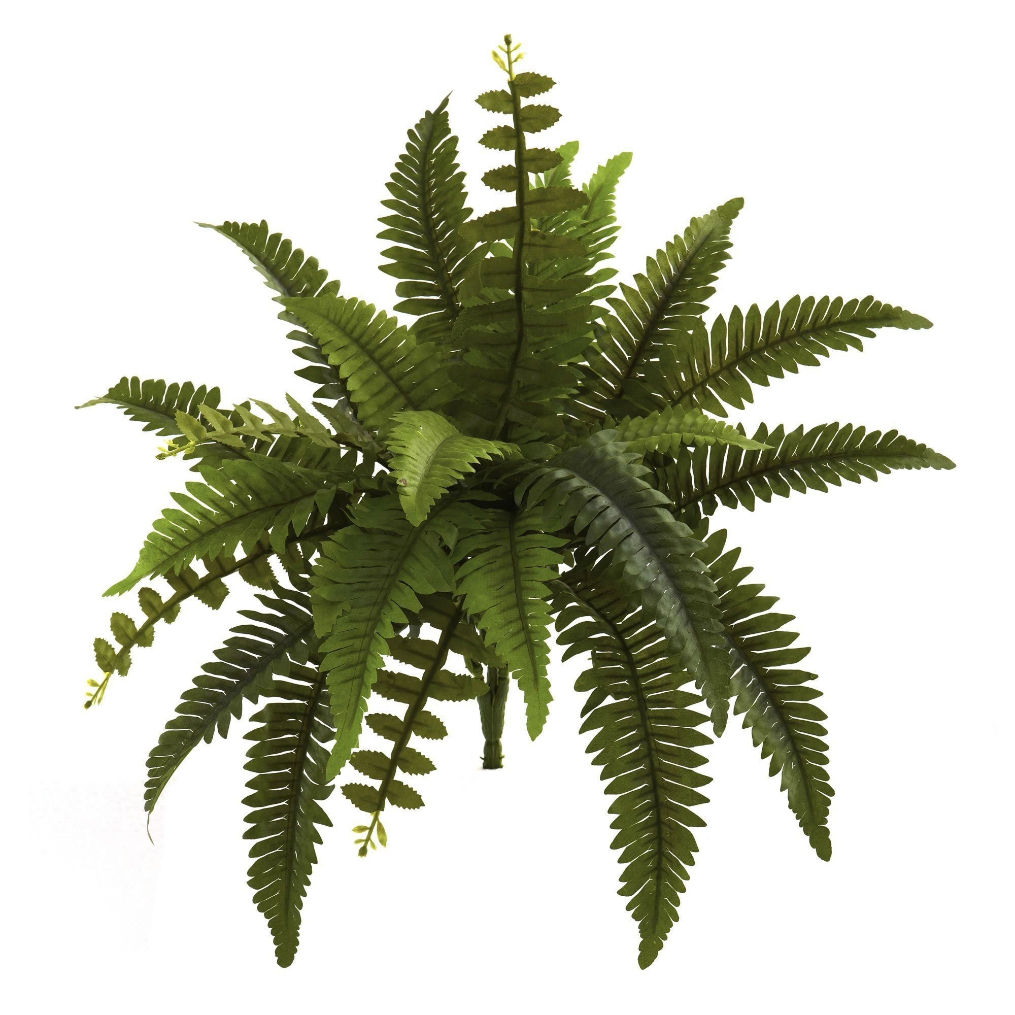 14 Boston Fern Artificial Plant Set Of 6 Nearly Natural