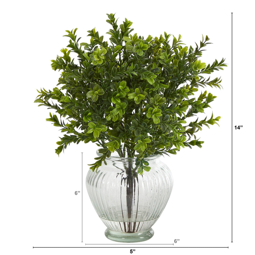 14 Boxwood Artificial Plant In Glass Planter Indoor Outdoor Nearly Natural