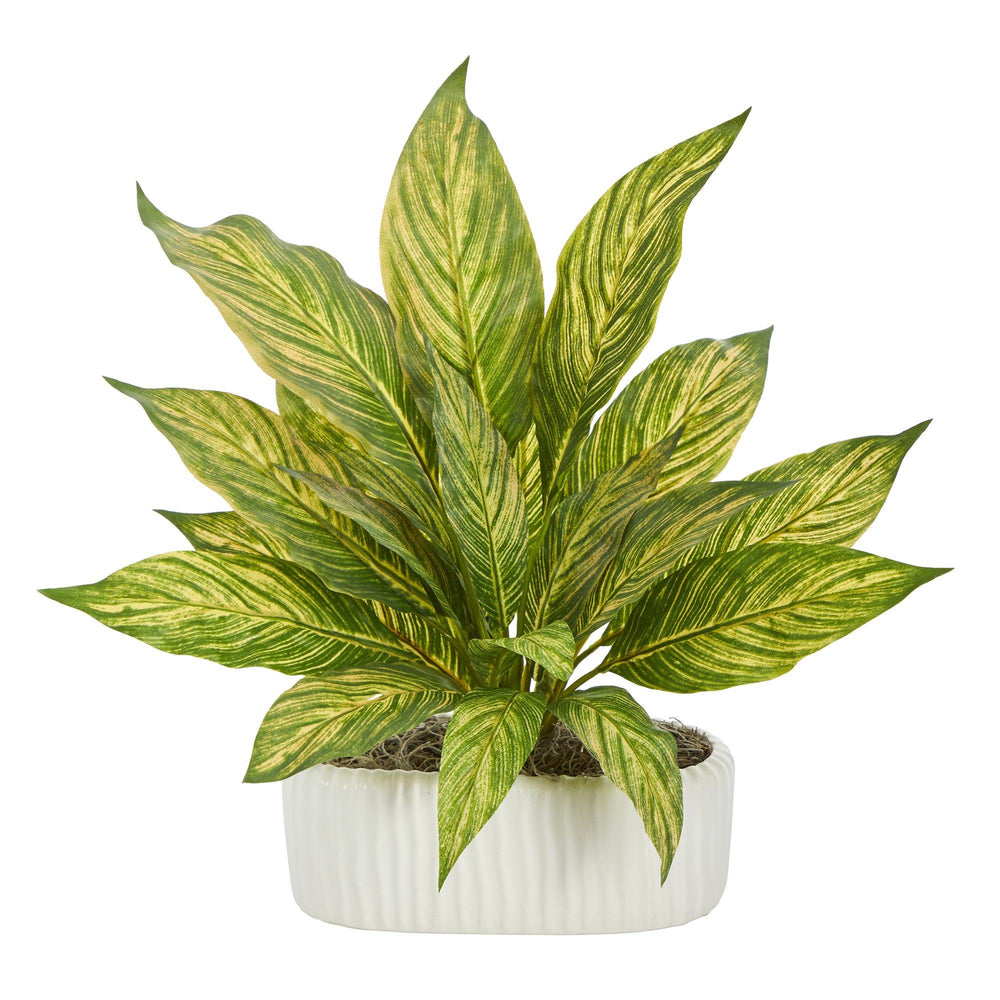 "14"" Musa Artificial Plant in White Planter"
