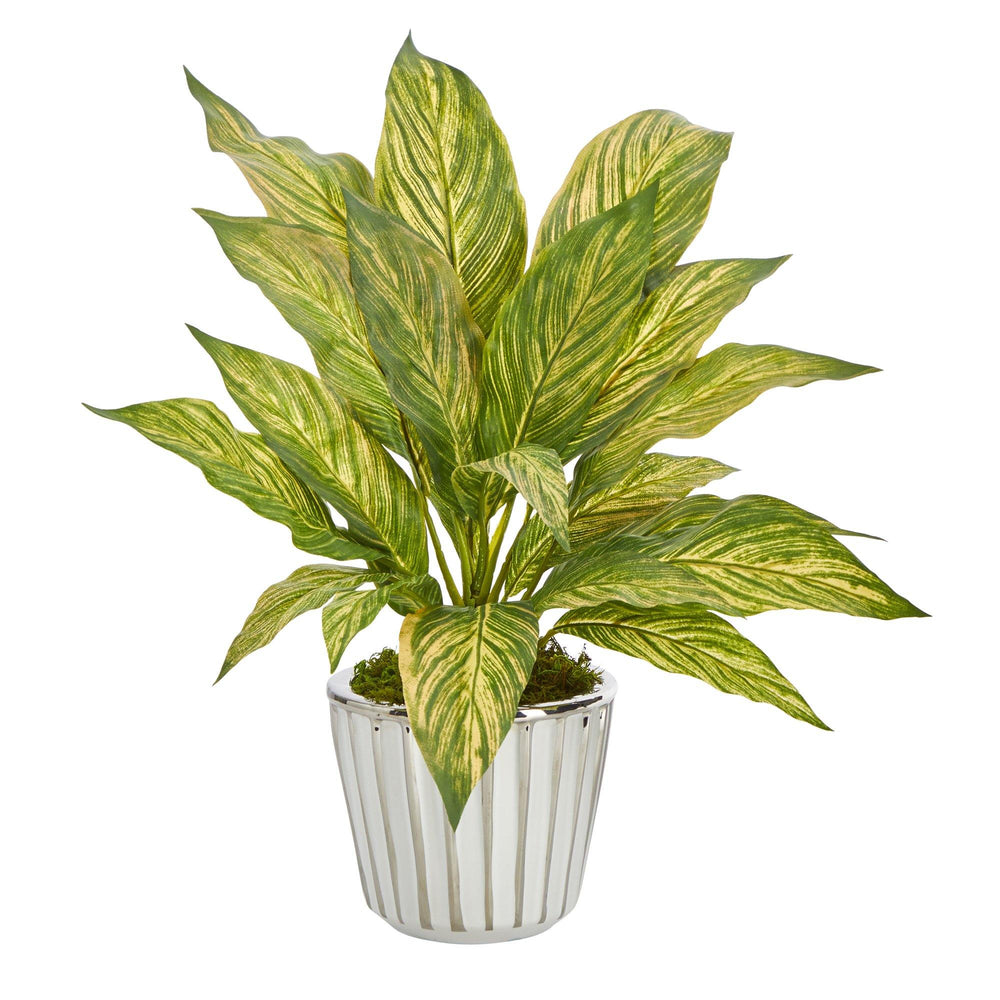 "14"" Musa Leaf Artificial Plant in White Planter with Silver Trimming"