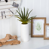 "15"" Aloe Artificial Plant in White Planter"