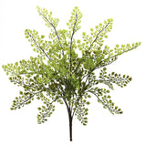 "15"" Maiden Hair Artificial Plant (Set of 12)"