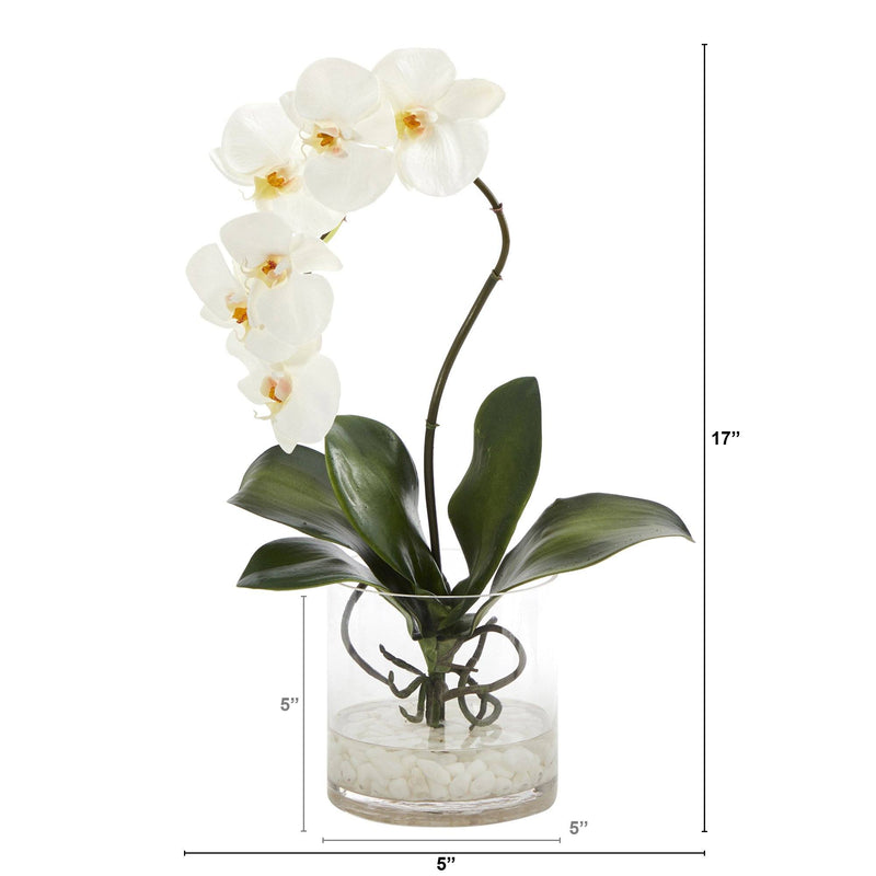 "17"" Phalaenopsis Orchid Artificial Arrangement in Glass Vase"
