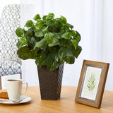 "17"" Pothos Artificial Plant in Embossed Black Planter"