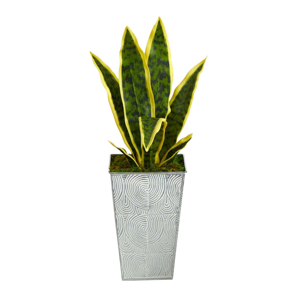 "18"" Sansevieria Artificial Plant in Embossed White Planter"