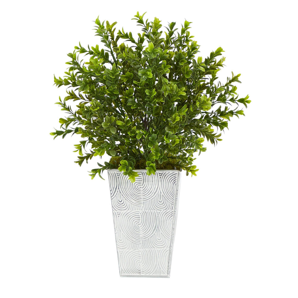 "19"" Boxwood Artificial Plant in Embossed White Planter (Indoor/Outdoor)"