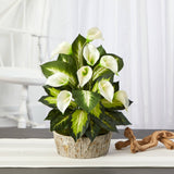 "19"" Calla Lily and Golden Dieffenbachia Artificial Plant in Weathered Oak Planter"