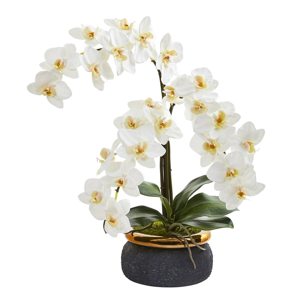 "19"" Triple Phalaenopsis Orchid Artificial Arrangement in Black Vase with Bronze Rim"