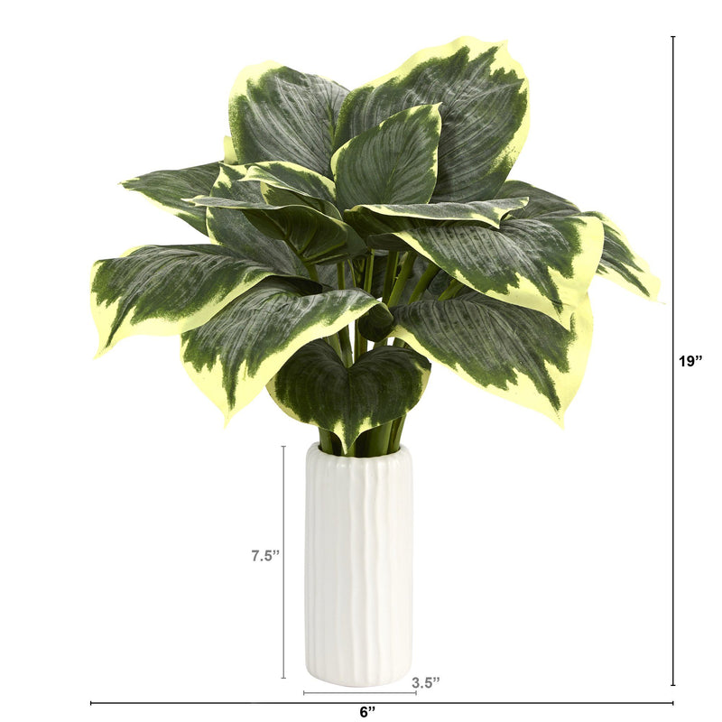 "19"" Variegated Hosta Artificial Plant in White Planter"