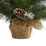 2' Frosted Pine Artificial Christmas Tree with 35 Clear LED Lights, Pinecones and Burlap Base
