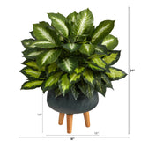 2' Golden Dieffenbachia Artificial Plant in Black Planter with Stand