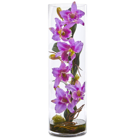 Silk Orchid Cattleya Plants