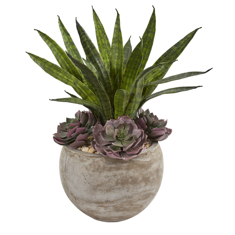 "20"" Echeveria Succulent and Sansevieria Artificial Plant in Sand Colored Planter"