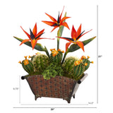 "21"" Bird of Paradise and Cactus Artificial Plant in Metal Planter"