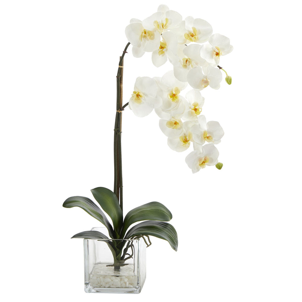 "21"" Phalaenopsis Orchid Artificial Arrangement in Glass Vase"
