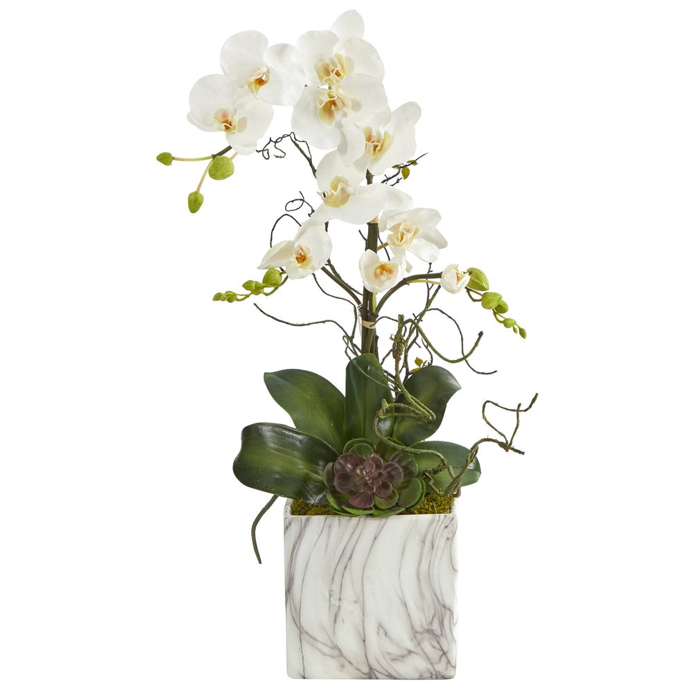 "24"" Phalaenopsis Orchid and Echeveria Succulent Artificial Arrangement in Marble Finished Vase"