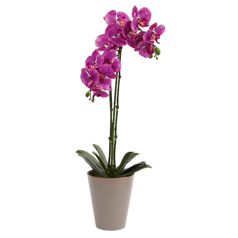 "24"" Speckled Phalaenopsis Orchid Artificial Arrangement"