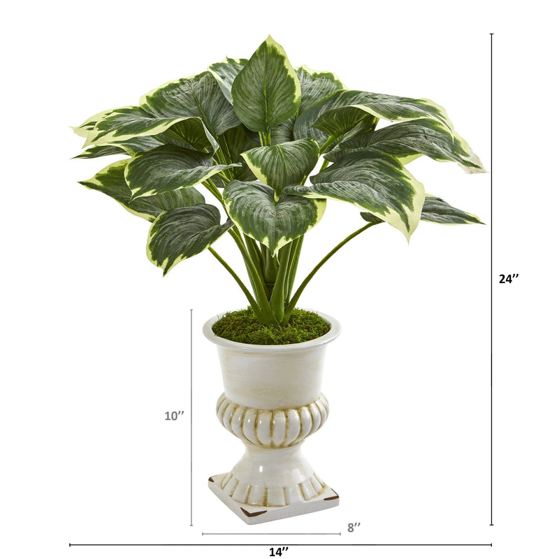 "24"" Variegated Hosta Artificial Plant in White Urn"