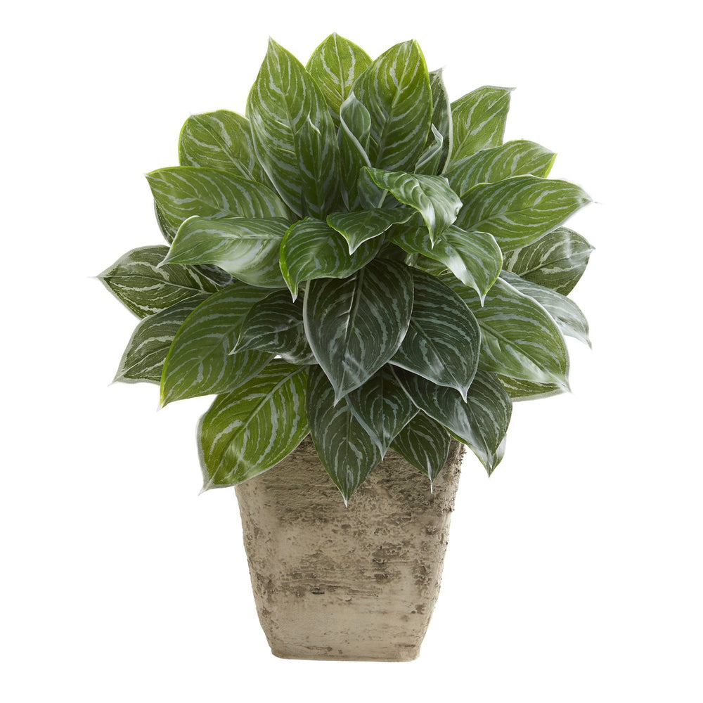 "25"" Silver Aglaonema Artificial Plant in Country White Planter (Real Touch)"