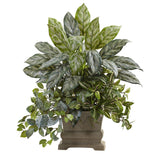 "28"" Mixed Silver Queen, Wandering Jew & Fittonia w/Planter"
