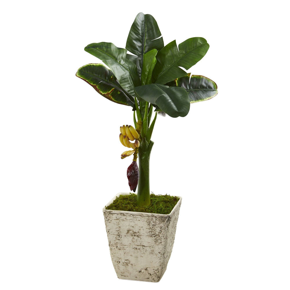 3' Banana Artificial Tree in Country White Planter