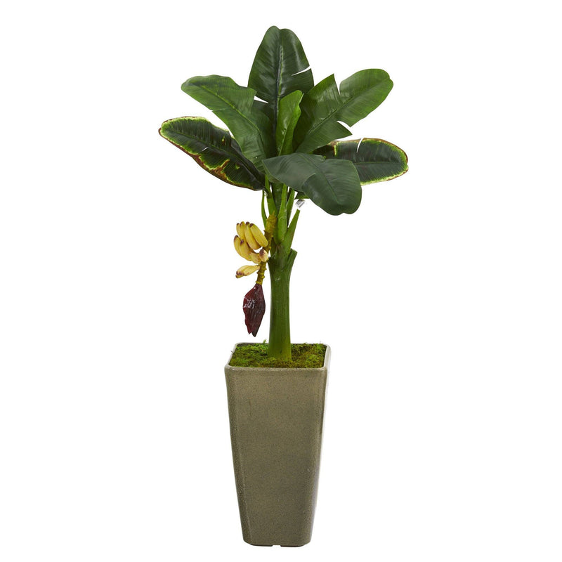 3' Banana Artificial Tree in Olive Green Planter